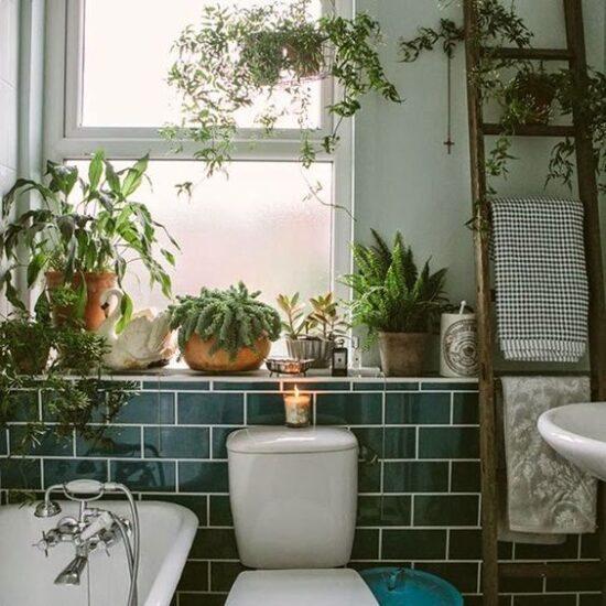 esempio di bagno con piante