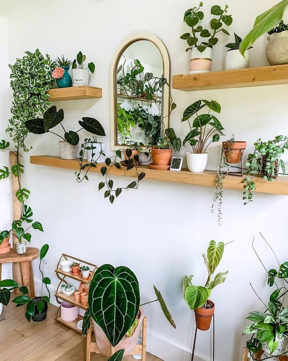 Scaffali piante in soggiorno
